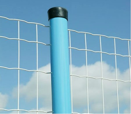 Holland Welded Wire Mesh Fence BD-06