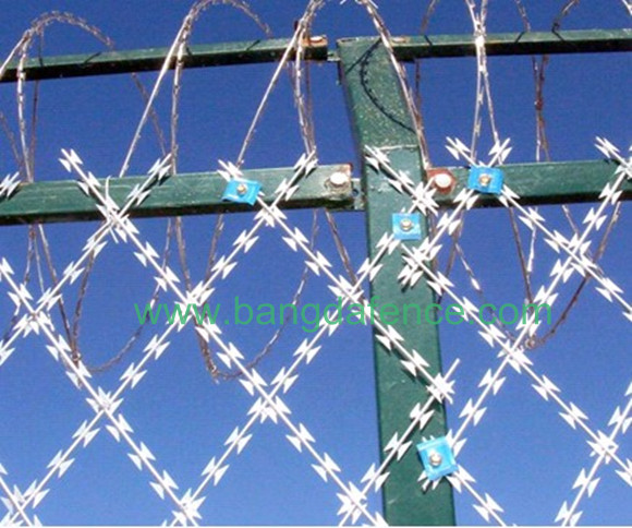 Razor Barbed Wire Mesh BD-02